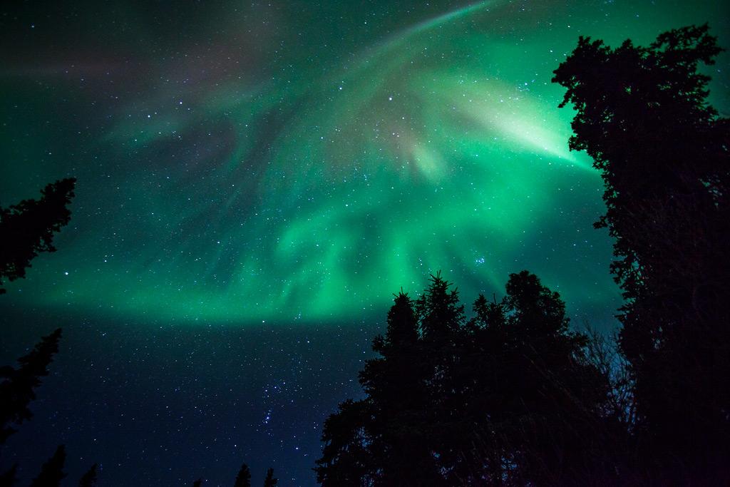 aurora-borealis-denali-national-park