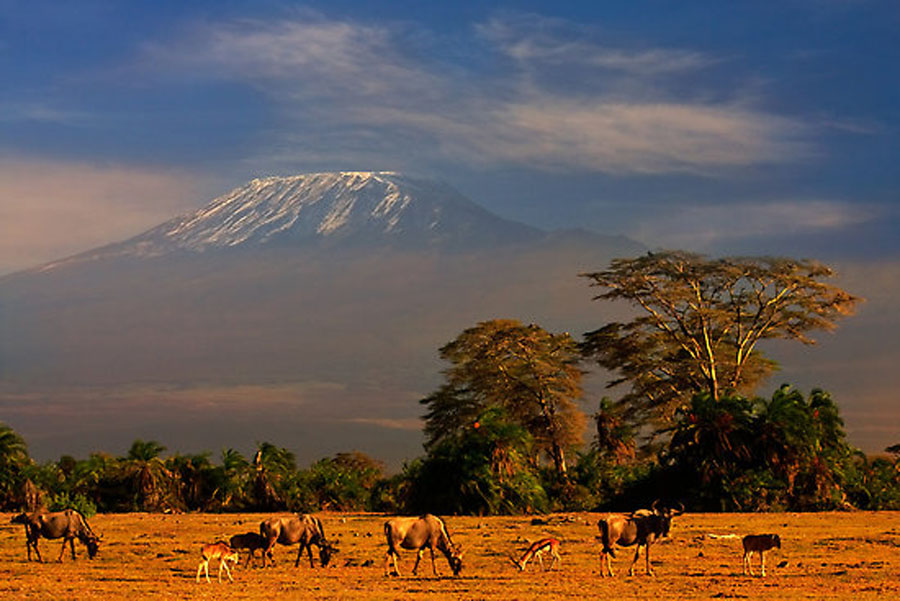 mt kilimijaro extinct