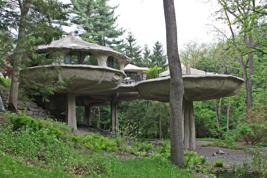 mushrom house new york