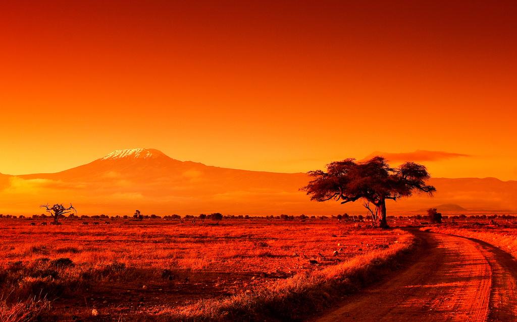 Mt. Kilimanjaro, Africa