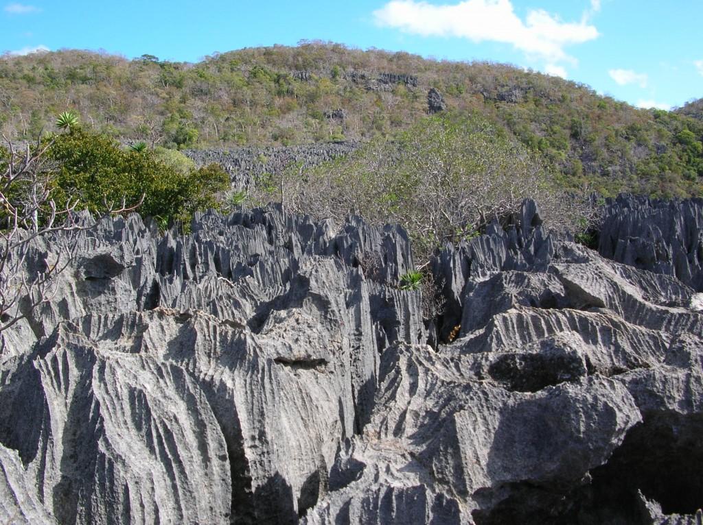 Madagascar Tsingy Ankarana