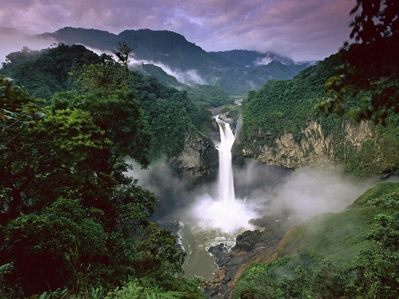 Yasuni National Park Photo credit: wikispaces.com