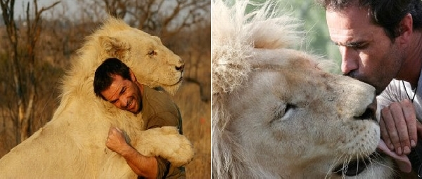 kevin richardson lion hug